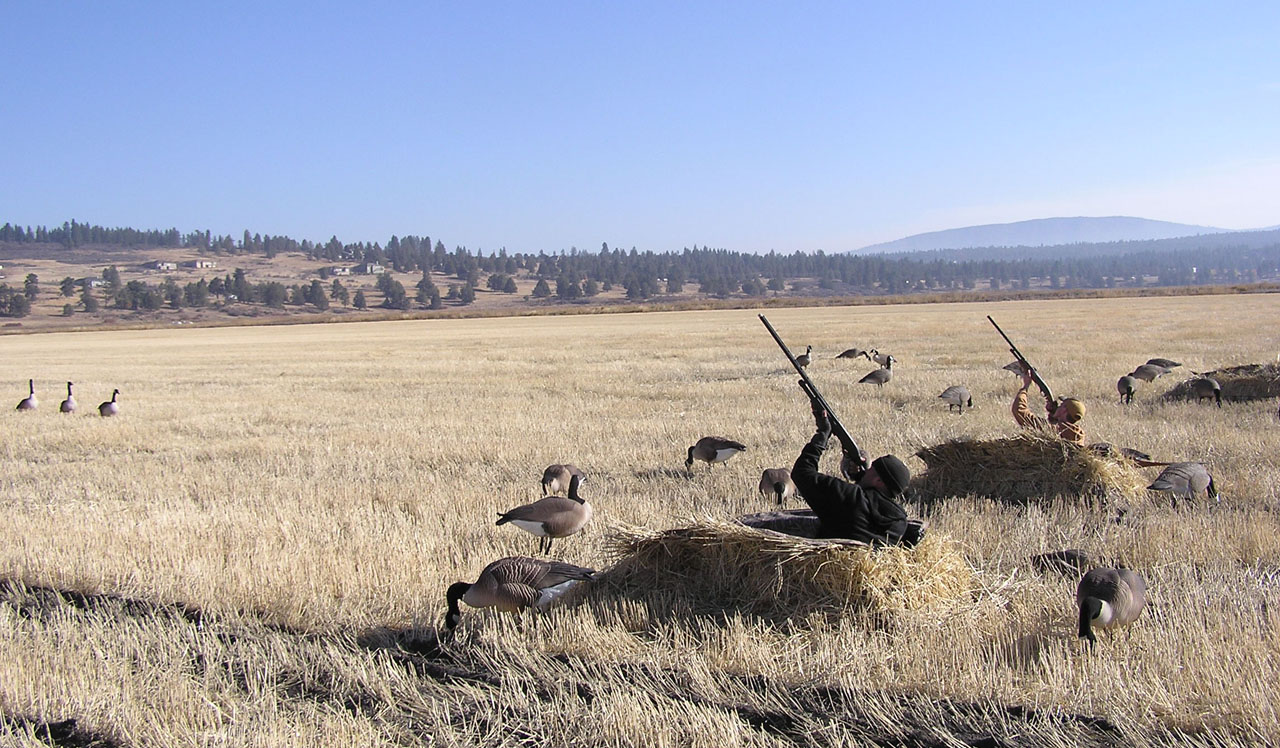 Waterfowl Hunting Oregon