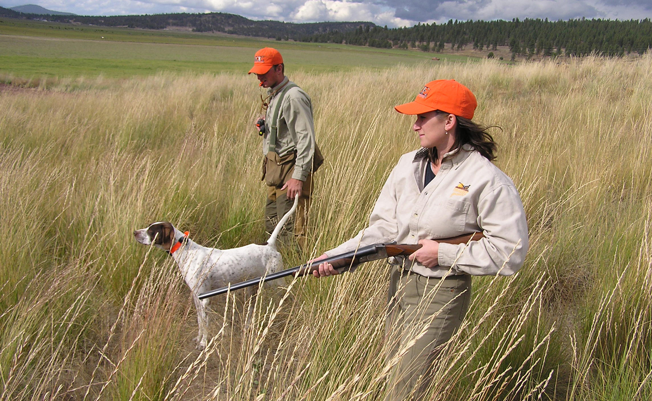 Valley Quail Hunting Oregon