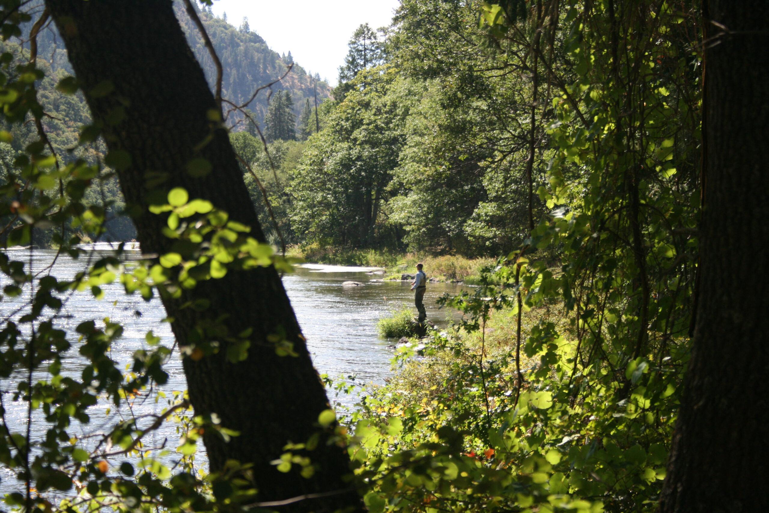 Walk and Wade Oregon