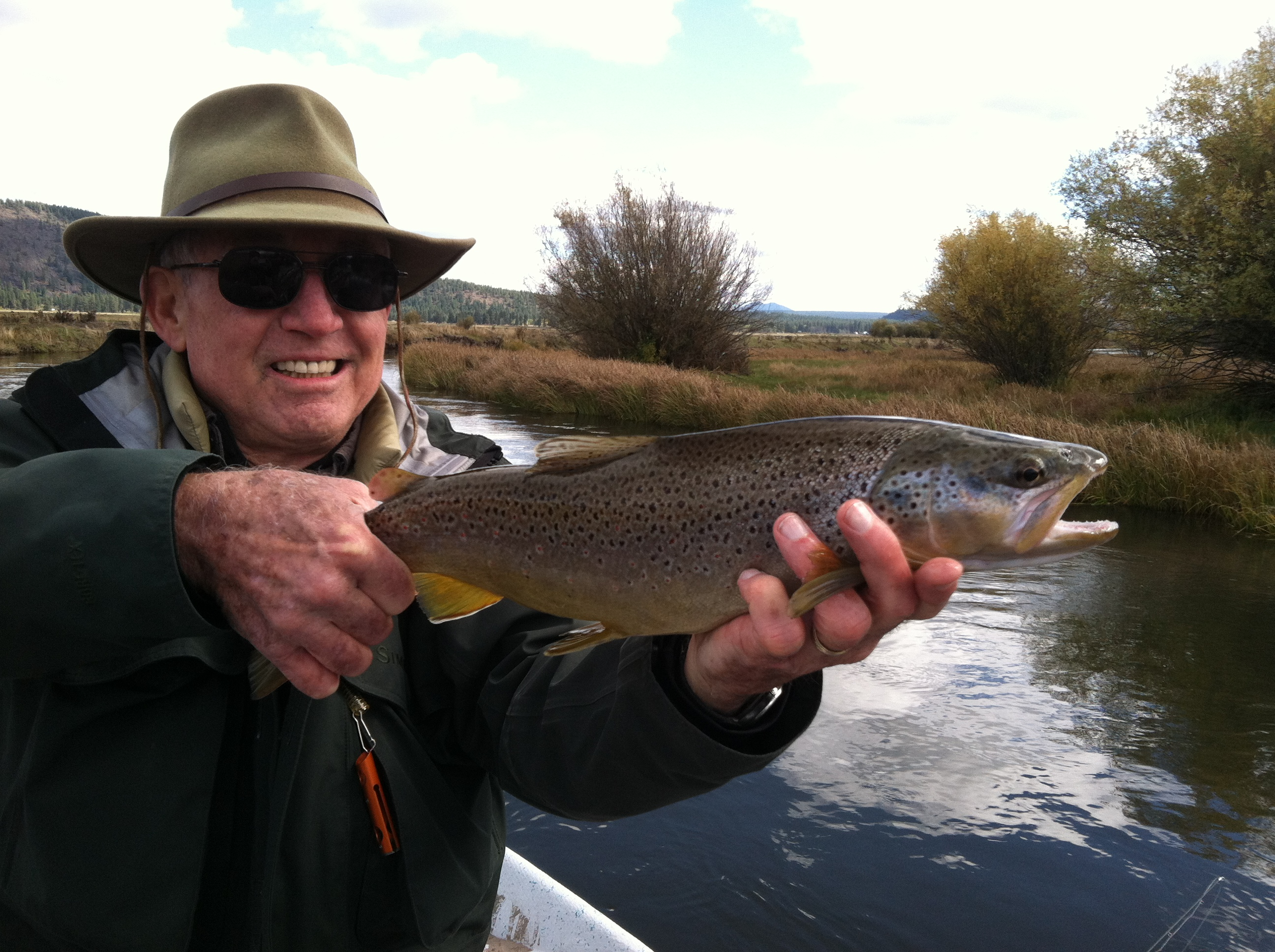 Wood River Brown